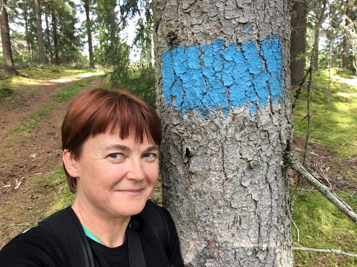 Upe Nykänen, Keski-Suomen maakuntauralla