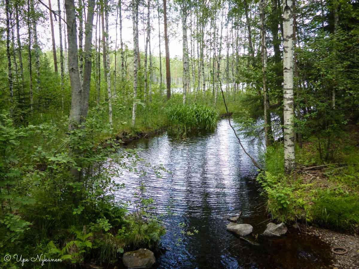 Majajoki, Evon retkeilyalue.
