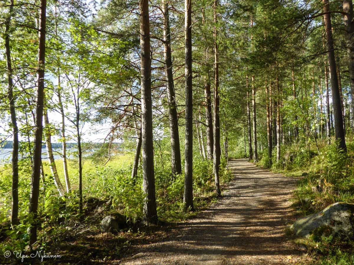 Martti Korpilahden polku Tuomiojärven rannassa, Jyväskylä