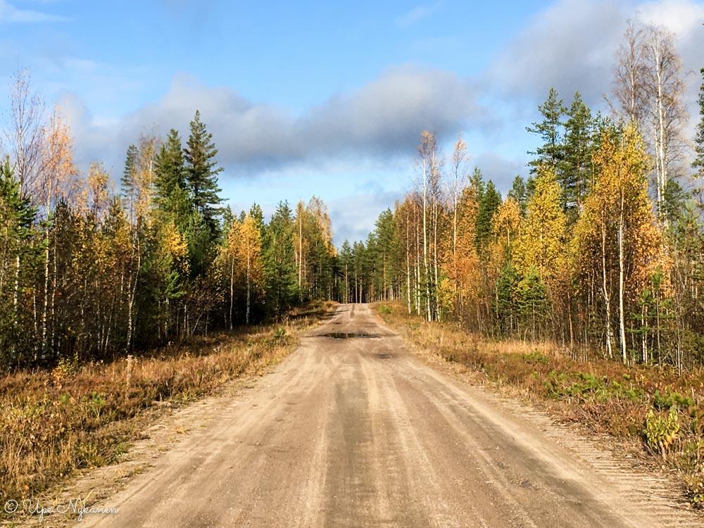 Syysaurinkoinen hiekkatie Tiilikasta Tulijärvelle, Saarijärvi.