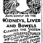 Stuff They Never Mentioned in History Class: 19th Century Advertisements