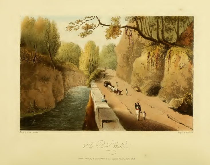 A drawing of the Bog Walk Gorge by James Hakewill (1825).