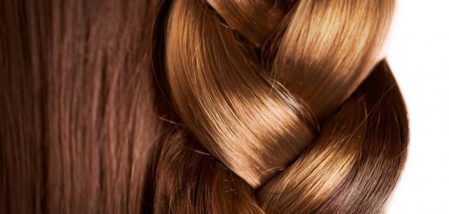 تكثيف الشعر وتقويته