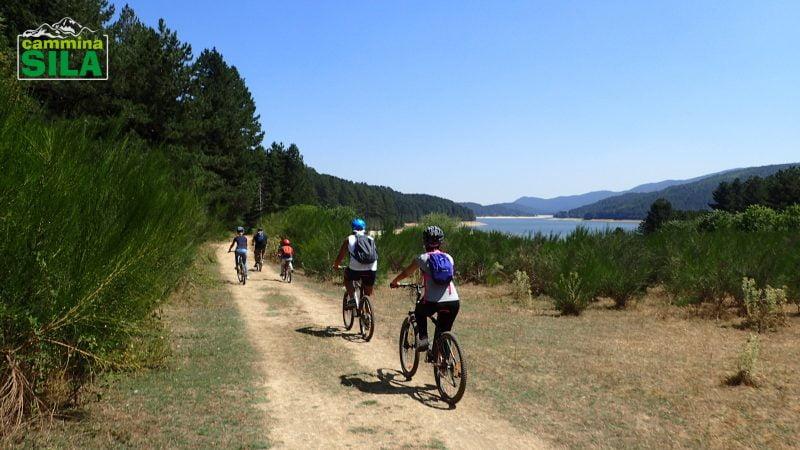 Attività outdoor in Sila - Mountain Bike