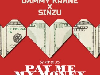 Dammy Krane Ft. Sinzu – Pay Me My Money (Remix 2.0)