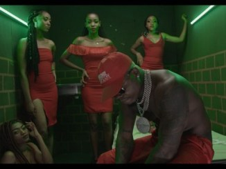 VIDEO: Harmonize – Bedroom (Remix) ft. Darassa, Country Boy, Young Lunya, Moni, Billnas, Rosa Ree & Baghdad