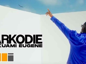 VIDEO: Sarkodie ft. Kuami Eugene – Happy Day