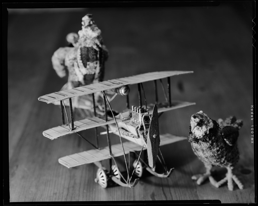 Still life of toy airplane and chickens as part of my 4x5x365 project. Shot with Toyo VX-125 on Kodak TMAX-100 film.