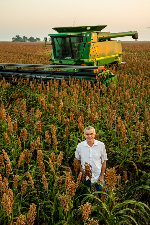 Oklahoma Secretary of Agriculture Jim Reese stands in a field of milo before the harvest.