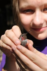 Young student holding a hummingbird