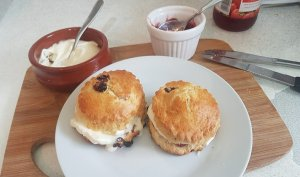 Traditional scones with cream