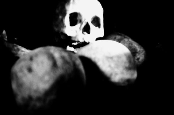 ('catacomb skulls' by peter honeyman)