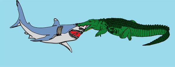 Shark V Croc The Ultimate Non Human Bond Celebrity Death