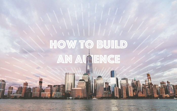 Audience - How To Build An Audience
