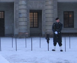 Freezing cold guard on duty at Royal Palace