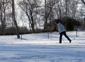 Cross country ski-ing in Norrkoping