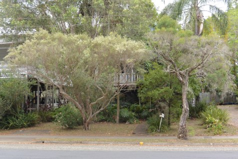 "The house behind the trees was once home to ""Double Dutch"", Lismore's first gay-owned and operated restaurant, and which was very much a home to Lismore's gay community during the 1980s. Later, the house became a residence for a couple: Les and Russell. Yes, South Lismore really did change!"