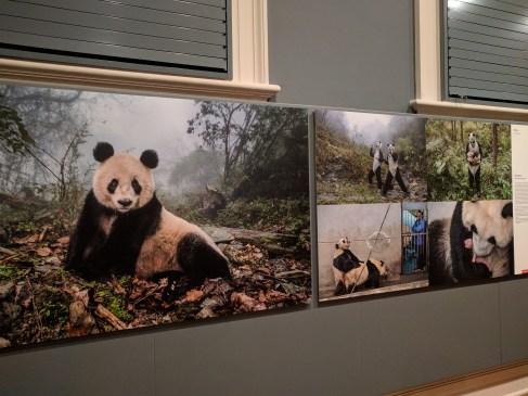 World Press Photography 3