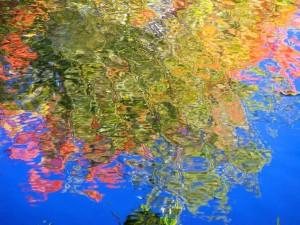 Autumn Abstract 11