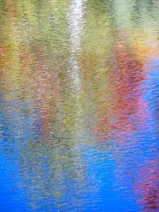 Autumn Abstract 12