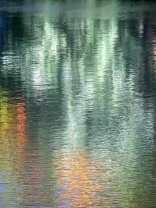 Autumn Abstract 16