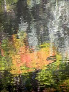 Autumn Abstract 4