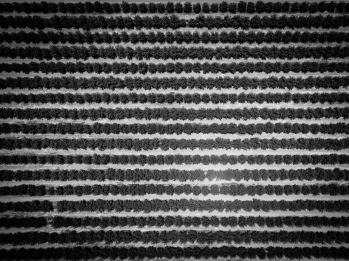 Textiles-0008