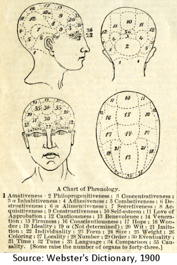 n image of phrenology from Webster's Dictionary, Circa 1900