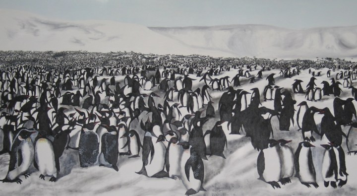 17Migration of Penguins