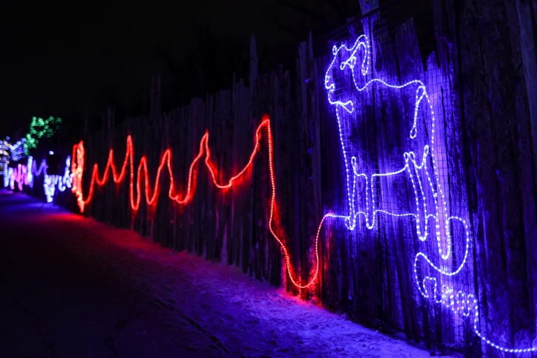 250m Rope Light Drawing Wall