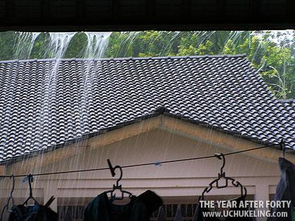 2009-01-10-rain-01