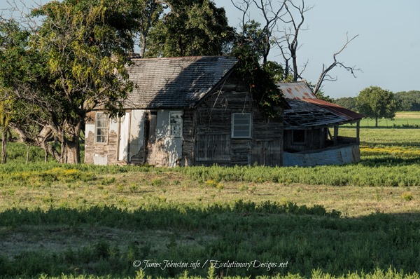 Abandoned Farmhouse Near HWY 677 and Farm-to-Market 373N