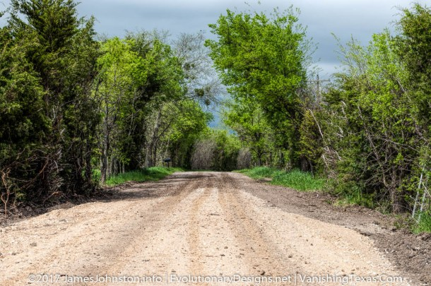 Muddy Dirt Road in Blue Ridge, Texas - Texas Landscape Pictures