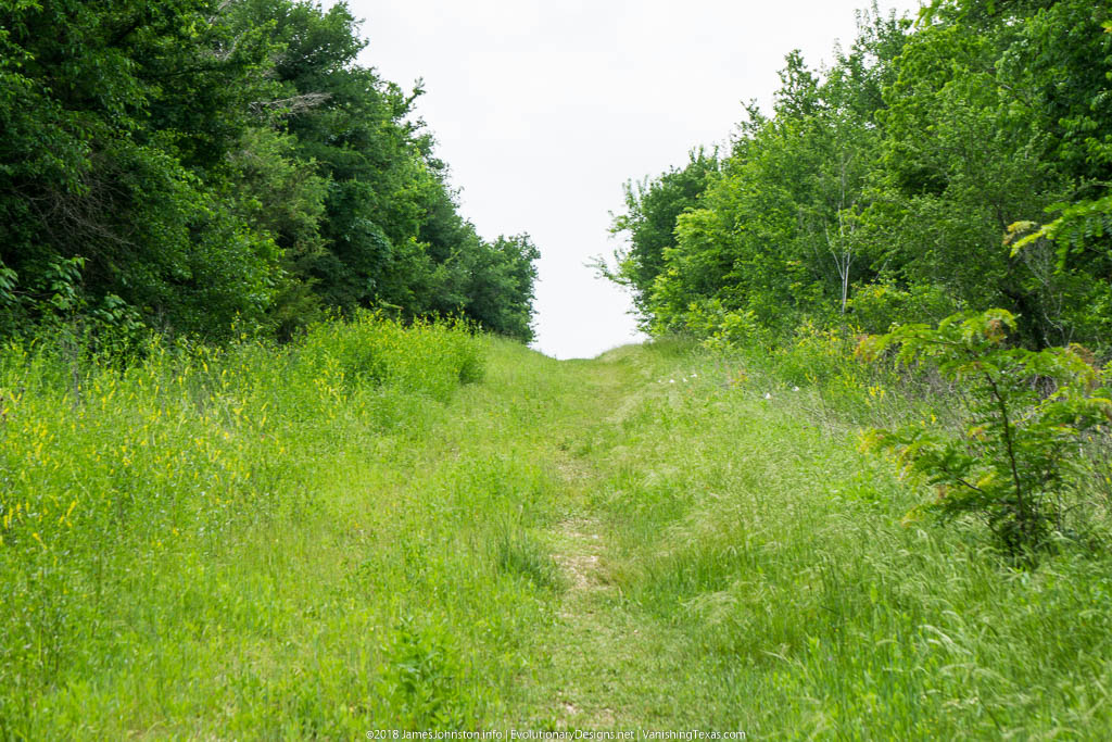 Crow Hill Trail – Hagerman National Wildlife Refuge – Up Hill to The Trail Hea