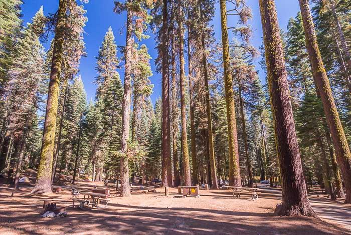 Best Yosemite National Park Camping Photos James Kaiser
