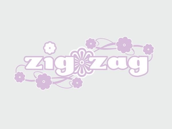 09_zig-zag_3379104943_o