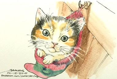 Socky Kitty