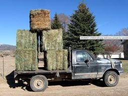 Square Hay Bales Loaded on a Farm Truck