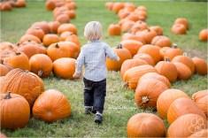 Fun in the Pumpkin Patch (via MeFitStudios dot com)