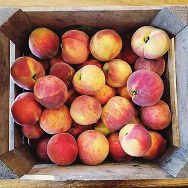 Food- Peaches at Market
