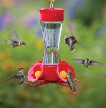 Four Port Hummingbird Feeder