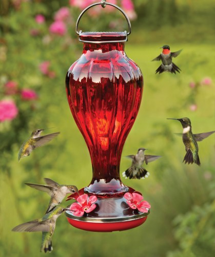 Red Glass Bottle Hummingbird Feeder