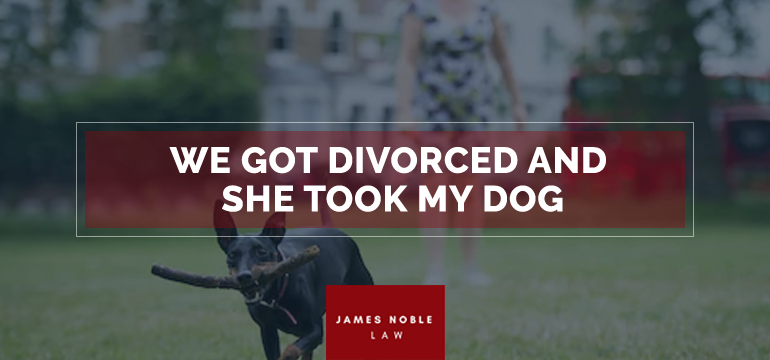 We-Got-Divorced-and-She-Took-My-Dog