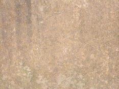 concrete_texture