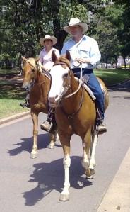 Hyde Park Horses
