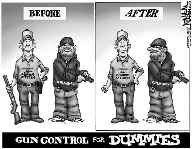 Gun-Control-For-Dummies