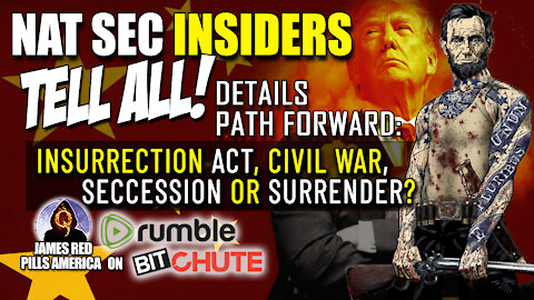 BOMBSHELL Interview Lays Out Path Forward: Insurrection Act, Civil War, Succession or Surrender?!
