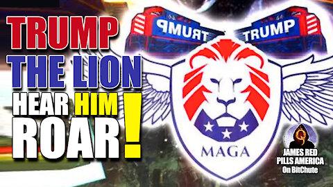 Trump The Lion - Hear Him Roar!