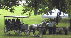 carriage in park 2012