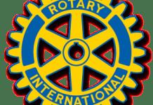 rotary wheel logo color